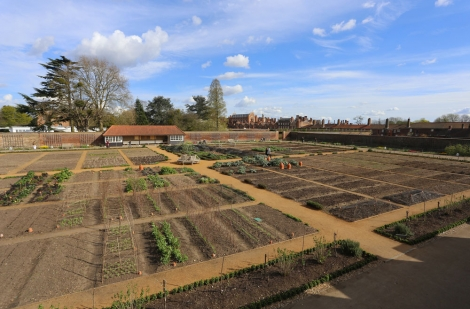 Kitchen Garden - Hampton Court Palace