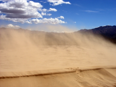 Wind in the Kelso Sand Desert